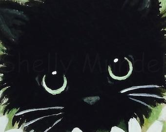 Black Cat Daisies - Cat Art Print - by Shelly Mundel