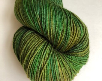 """Hand dyed sock yarn in """"Trail in the Woods"""" colorway"""