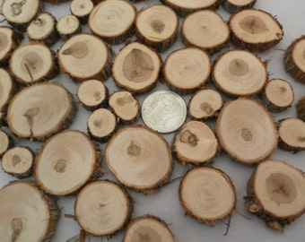 100 Small Wood Slices~ .5 to 1.25 inch~ Tree Slice Assortment, Craft Disks, Table Confetti, Wood Mosaic Pieces, Small Tree Cookies,