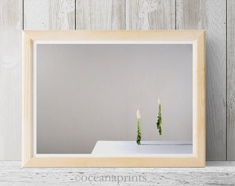 Vegetable photo, Still life photo, turnip photo, green vegetable, minimalist art, contemporary photo, vegetable art print, levitate, white