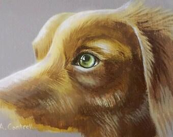 """Puppy Eyes Study 1 - Original acrylic on board 5x7"""""""