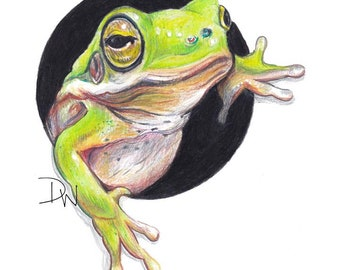 Tree Frog Print - Realistic Nature Art, Adorable Bright Green Frog, Crayon Drawing, Nursery Art, Trompe L'oeil