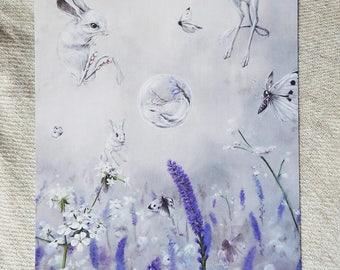 Transient- Jerboa Lavender fields postcard