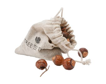 Bag of Sun-Dried Wild Soapberries - Harvested from Eco-Reserves, Fair Trade, Sustainable, Eco-Friendly