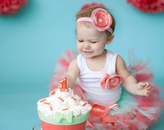 Mint and Coral Birthday Dress | Baby Girls Tutu Outfit