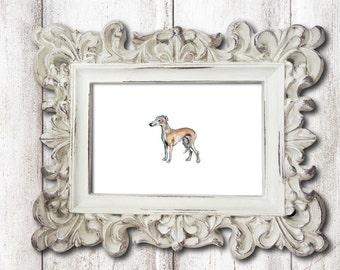 Small Greyhound Dog Print Watercolor Painting Print Watercolor Greyhound Print Greyhound Art Greyhound Wall Art Greyhound Decor Dog Artwork