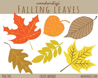 Clipart -Fall leaves Clipart - Fall Leaves - Autumn Clip art - Thanksgiving Clipart