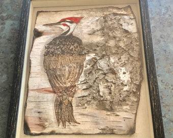 Pileated Woodpecker I