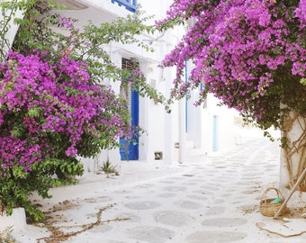 "Greece travel photography white pink blue wall art bougainvillea flowers whitwashed street ""Greece Flowers One"""