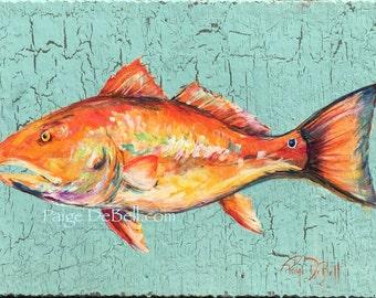 "REDFISH** 11"" x17"" Print of my original Red Drum Fish"