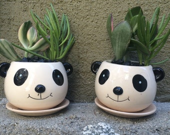 """Panda Planter Only - No Plant/gift/table favor/measure 2.5 high wide 4"""""""