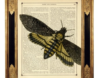 Death's Head Moth Art Print Hannibal Gothic Skull Halloween Insect Picture - Vintage Victorian Book Page Dictionary Art Print Steampunk