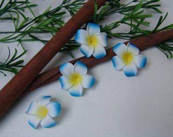 Frangipani flower - blue and white flower 4cm