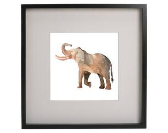 Watercolor Safari Animal Prints for Home or Nursery