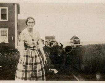 vintage photo 1920 Lady Horn Rim Glasses Plaid Dress w Cow