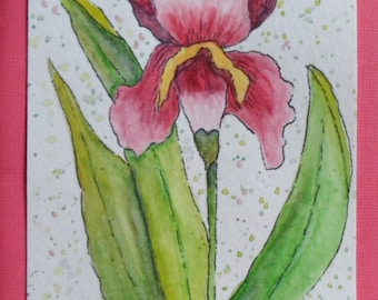 Iris Card Watercolor Iris Card Watercolor Cards Watercolor and Ink  Irises Watercolors Greeting Cards Hand Painted Cards