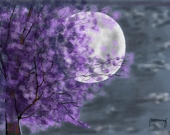 Silver Moon-1