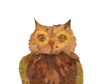 11x14 owl print