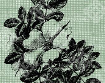Digital Download Vintage Wild Rose Branch, digi stamp, digis, digital stamp, Branch with foliage and flowers, Floral Antique Illustration