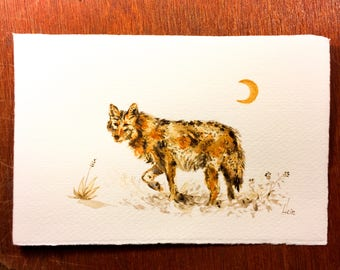 Golden Coyote and Crescent Moon — Original Acrylic Painting