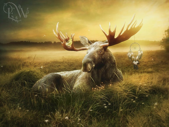 Canadian moose with dreamcatcher fantasy art print