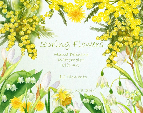 Watercolor flowers clipart spring flowers clip art hand mightylinksfo