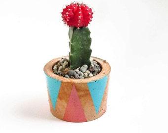 Cactus planter - Succulent planter - Cactus planter pot - Cactus pot - Western decor - Concrete planter - Succulent pot - Cactus gift