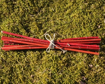 Decorative 10 branches/ dogwood branches/ red branches/twigs/ red twigs