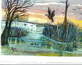 Lone Mallard duck,  flying, acrylic print Lindy greeting  card from original painting, artist design, blank inside inside