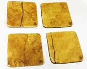 Hand-Crafted Tobacco Leaf Coasters (Square - Flue-cured)