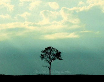 """Nature Photograph, Landscape Picture, Teal, Blue, Sky, Clouds, Monochrome,  Minimalist, Tree Photography- 5x5 inch Print, """"One Tree"""""""