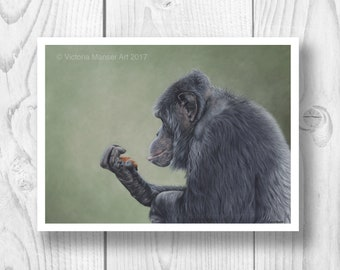 "Giclee Limited Edition Print - ""Contemplation"" chimpanzee"