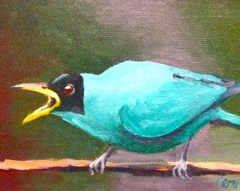 Bird Painting • Oil Paintings • Small Paintings • Original Art • Oil Painting • Daily Painter • Daily Painting • Blue Bird