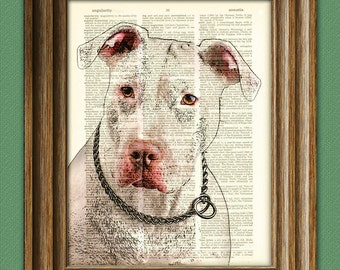 White Pitbull Dog Art Print illustration beautifully upcycled dictionary page book art print