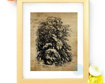VINTAGE Printable Forest Print Nature Print Forest Photography Tree Art Vintage Decor Nature Photography Forest Wall Art Nature Landscape