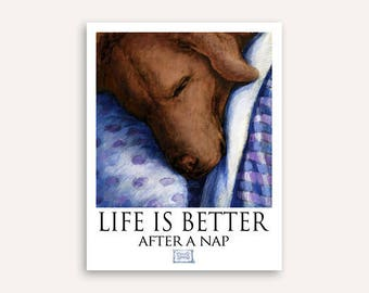 Chocolate Lab Life Is Better After A Nap Poster of Labrador Retriever Sleeping in Bed