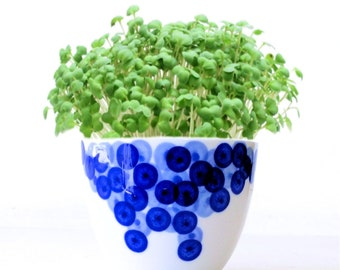 DIY Microgreens Garden Kit in Porcelain Planter Hand-painted Blueberries - Complete Growing Kit includes Planter, Organic Seeds and Soil Mix