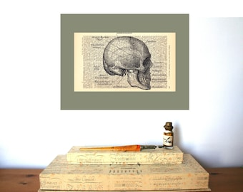 Medical Student Gift | Shabby Chic | Anatomy | Science | Steampunk | Rustic Home Decor | Wall Decor | Human Skull Book Art | Graduation Gift