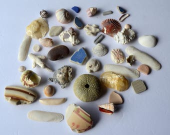 40 pieces Beach Finds Genuine Sea Glass Coral Shells Pottery Stones Arts and Crafts Material  Suncatcher Beads