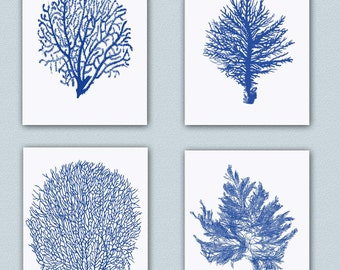 Nautical art, 4 Sea fan Prints, seafan coral decor, navy blue fan sea, beach cottage decor, nature inspired, coastal decor SKU04