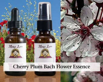 Cherry Plum Bach Flower Essence, Dropper or Spray for Spiritual Surrender or Trust in Extreme States, Fearing Breakdown or Losing Control