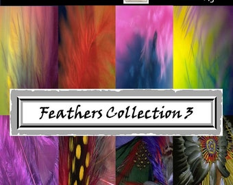 Feathers Digital Papers - Tribal Feathers - Peacock Feathers - Instant Printable Download- crafts, party, wedding, photography