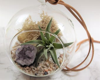 Amethyst air plant terrarium kit:unique gift; tillandsia; unique gift ;terrarium;office decor