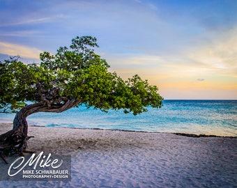 Aruba #1 - Photograph