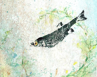 Lonely Green Shiner Watercolor and GYOTAKU Print 8X10 Art Print by Barry Singer