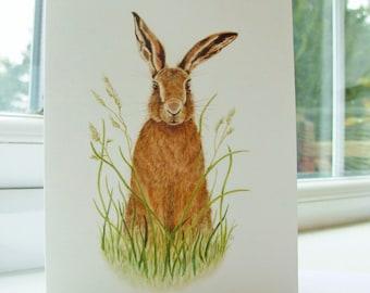Brown Hare, Hare Fine Art Greetings Card, Hare Print Card, Hare Art Card, Nature Card, UK