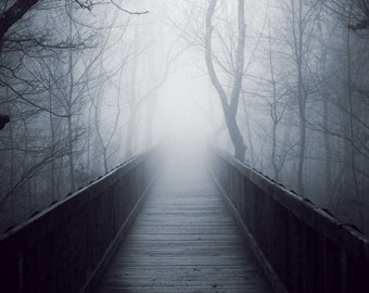 The Fog - Original Fine Art Photograph, FREE SHIPPING