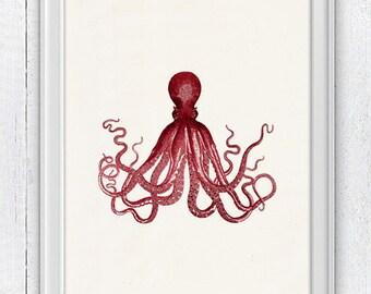 Gorgeous Red octopus no.16- Wall decor poster ,Marine  sea life illustration A4 print- vintage natural history SAS162