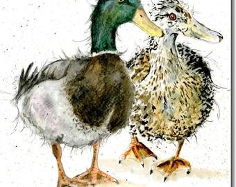 Duck Card - Mallard Ducks Greeting Card, Bird Card, Blank inside