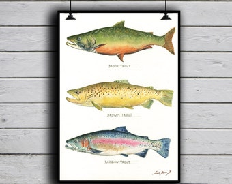POSTER PRINT - Brook trout Brown Trout Rainbow trout - fish art - fishing print - trout painting - fly fishing trout -by Juan Bosco